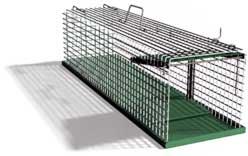 apex siebenschl fer vertreiben und abwehren. Black Bedroom Furniture Sets. Home Design Ideas